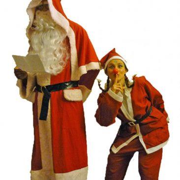 Spectacles et animations de Noël 2013